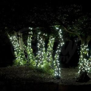 solar powered garden lighting